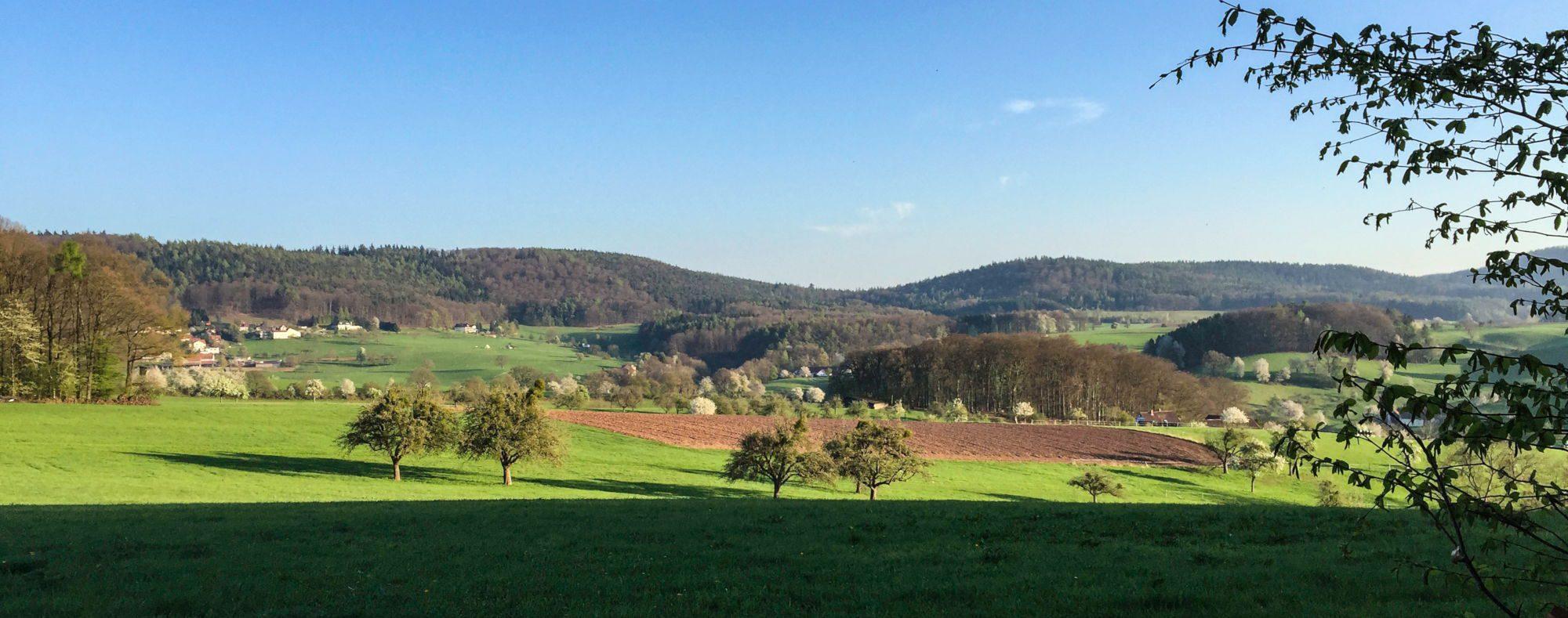 Landschaft imOdenwald